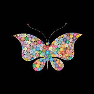 mariposa para niñas