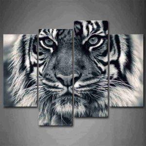 cuadros lienzos de animales