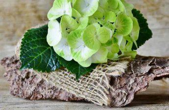 fondos de texturas de madera bonitos