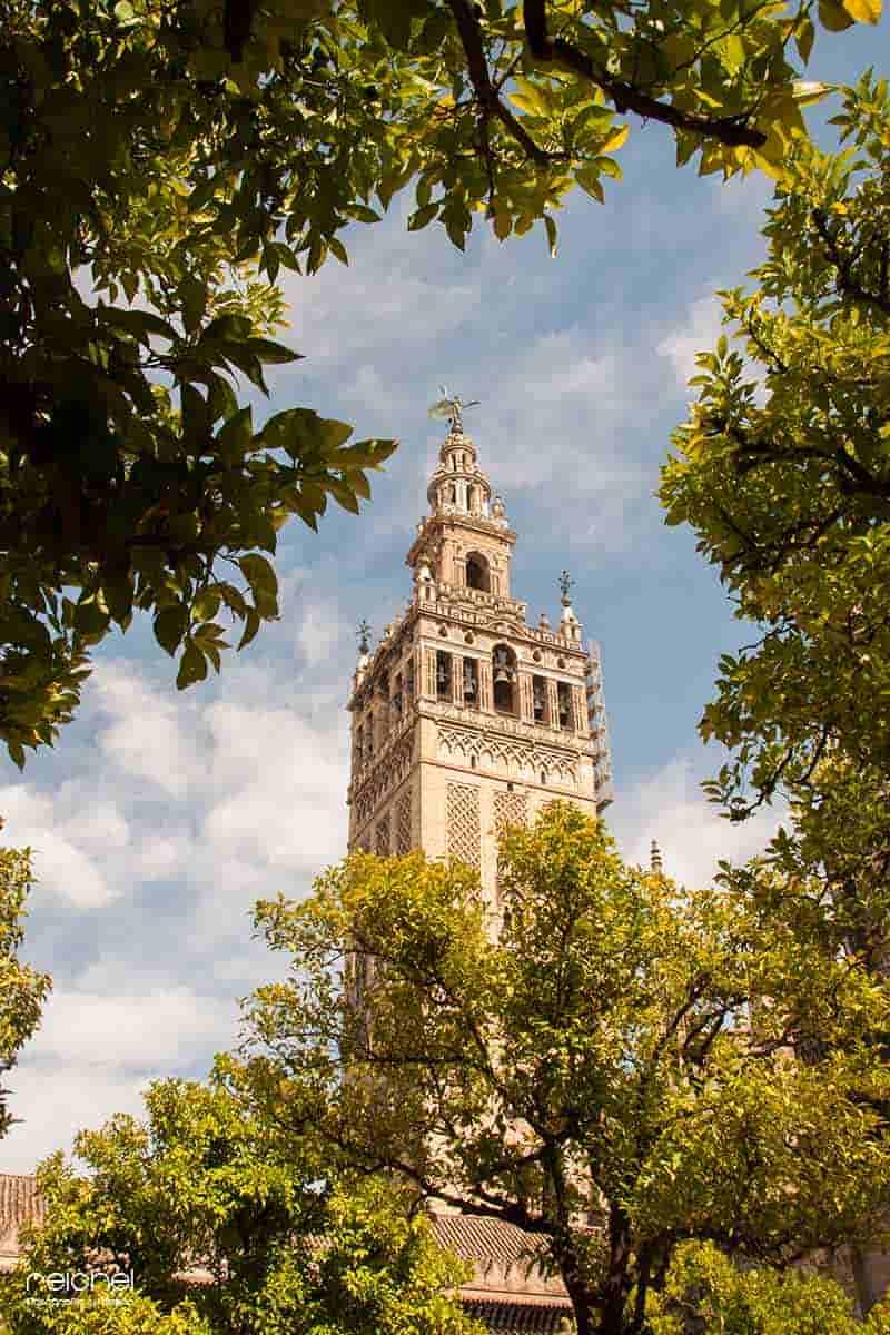 torre de la giralda sevilla
