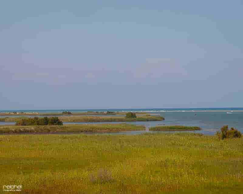 desembocadura del rio ebro