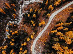 foto de bosques
