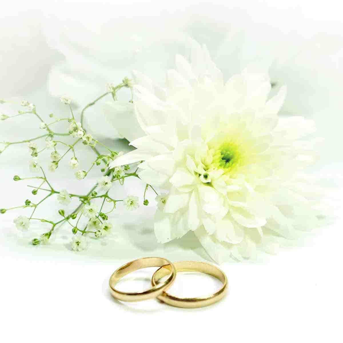 album fotos bodas de oro