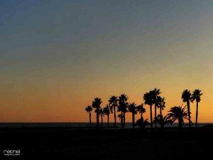 hora dorada en la playa