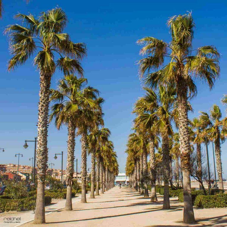 Sitios bonitos para hacer fotos en Valencia